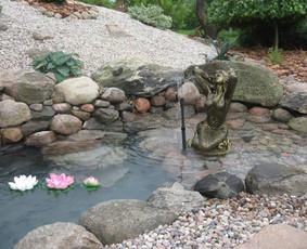 Apželdinimas dekoratyviniai baseinai