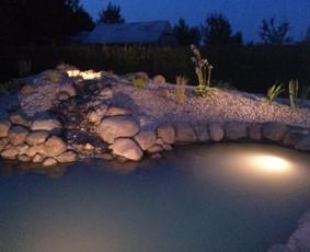 Apželdinimas dekoratyviniai baseinai / Donatas Vozbinas / Darbų pavyzdys ID 43629