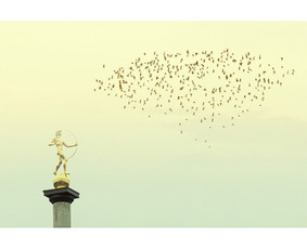 """""""Parallels"""" (50X31cm) © Tatjana Iljina"""