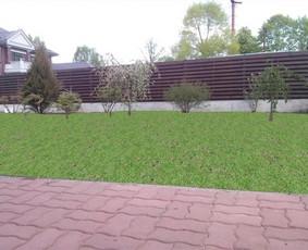 Apželdinimas dekoratyviniai baseinai / Donatas Vozbinas / Darbų pavyzdys ID 44895