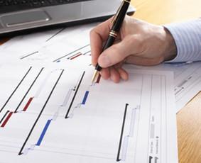 Projektų ir dokumentų rengėjas