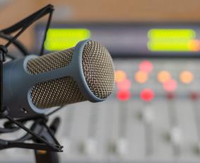 Reklaminių garso klipų gamyba, įgarsinimo paslaugos