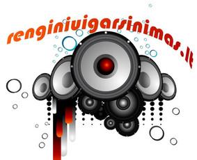 RENGINIŲ ORGANIZAVIMAS, VEDIMAS, ĮGARSINIMAS, DJ,