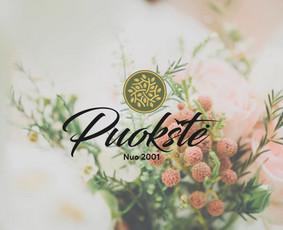 Profesionalių logotipų kūrimas ir maketavimo paslaugos