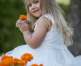 Vestuvių, krikštynų, asmeninių fotosesijų fotografavimas! / Viktorija / Darbų pavyzdys ID 459397