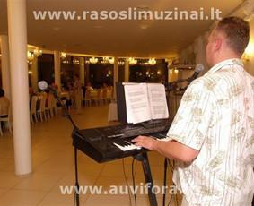 Vokalas, saksofonas, trimktas, akordeonas, lietuvoskos, angliskos, rusiskos dainos