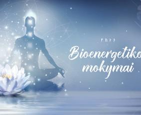 Bioenergetikas Kaune ir Vilniuje