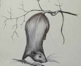 Tapyba, iliustravimas, idėjų išpildymas. / Viktorija Avižienytė / Darbų pavyzdys ID 481267