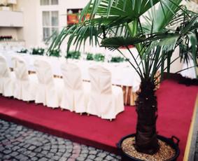 Staliukas vaišėms, švenčių, renginių dekoravimas