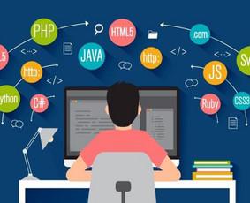 Profesionalios programavimo paslaugos