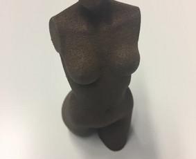 3D spausdinimas ir projektavimas Kaune ir visoje Lietuvoje