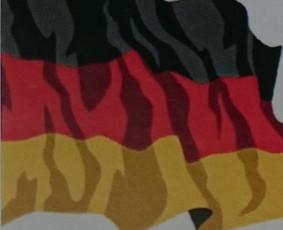 Vokiečių k. žo/raštu, skambučiai, Kindergeld, mokesčių grąž.