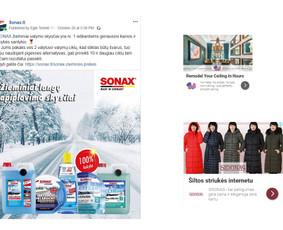 Pardavimų didinimas internetinės reklamos pagalba / Eglė Tertelė / Darbų pavyzdys ID 549871