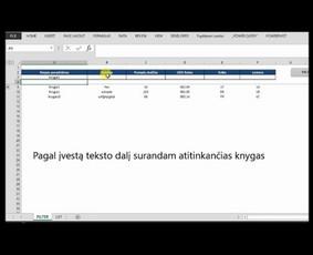 Darbo optimizavimas su MS Excel/Duomenų analitika