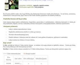 Gitana Railienė, tekstų kūrėja, visa Lietuva / Gitana Railienė / Darbų pavyzdys ID 567891