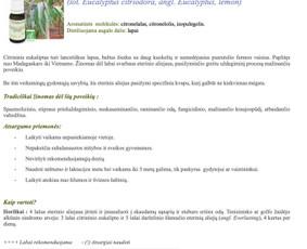 Gitana Railienė, tekstų kūrėja, visa Lietuva / Gitana Railienė / Darbų pavyzdys ID 567903
