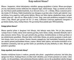 Gitana Railienė, tekstų kūrėja, visa Lietuva / Gitana Railienė / Darbų pavyzdys ID 568073