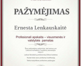 Buhalterinės apskaitos paslaugos Klaipėdoje / Ernesta / Darbų pavyzdys ID 578827