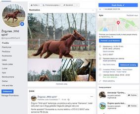 """Žirgyno """"Wild spirit"""" Facebook paskyros administravimas"""
