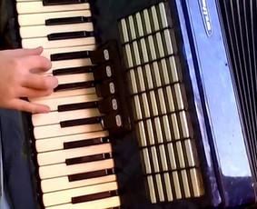 Akordeono,sintezatoriu pamokos