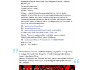 Reklaminiai tekstai Straipsniai Aprašymai (LT/ENG) / Irena J. / Darbų pavyzdys ID 639815