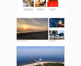 Internetinių svetainių ir el. parduotuvių kūrimas / Marius Zienius / Darbų pavyzdys ID 644125