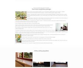 Internetinių svetainių ir el. parduotuvių kūrimas / Marius Zienius / Darbų pavyzdys ID 644161