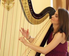 Profesionali muzika renginiams - ArteMus muzikų centras