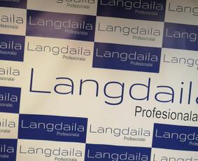 Langų profesionali priežiūra, reguliavimas ir remontas