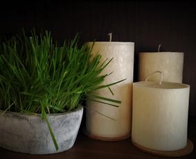 Palmių vaško žvakės