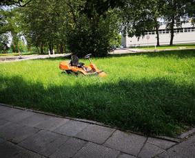 Aplinkos priežiūra,vejos pjovimas, Krūmų karpymas.