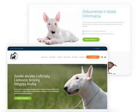 Internetinių svetainių ir el. parduotuvių kūrimas / ideabooz / Darbų pavyzdys ID 691855
