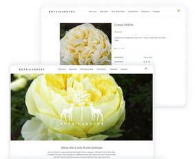 Internetinių svetainių ir el. parduotuvių kūrimas / ideabooz / Darbų pavyzdys ID 691863