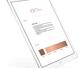 Internetinių svetainių ir el. parduotuvių kūrimas / ideabooz / Darbų pavyzdys ID 691929