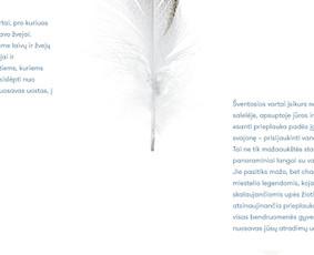 Tekstų rašytoja, komunikacijos specialistė / Agnė Kruopytė / Darbų pavyzdys ID 695333