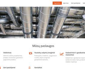 Programavimas PHP, internetinių svetainių kūrimas.