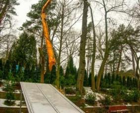 Profesionalus aplinkos darbai, medžių pjovimas,genejimas