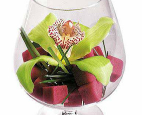 Orchidėja taurėje