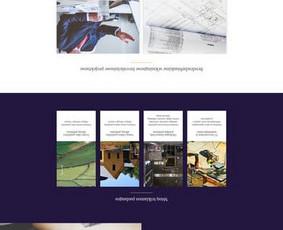 Interneto svetainės, verslo valdymo sistemos, dizainas