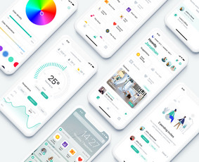 UX/UI Dizaineris