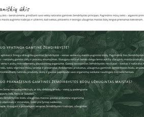 Craftmark Studio - tekstai rinkodarai, pardavimams Lt / En