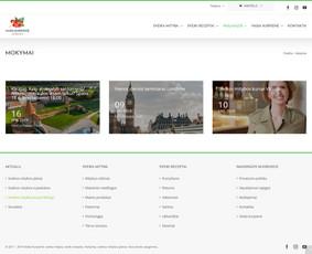 Interneto svetainių, elektroninių parduotuvių kūrimas