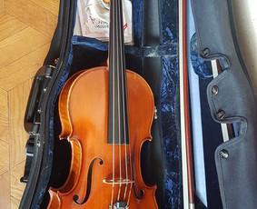 Smuiko ir alto pamokos