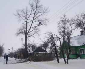 Pavojingų medžių pjovimas ir aukštuminiai darbai