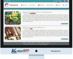 Profesionalios interneto svetainės, e-shop 100 Eur