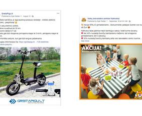 Pardavimų didinimas internetinės reklamos pagalba / Eglė Tertelė / Darbų pavyzdys ID 830947