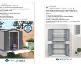 Pardavimų didinimas internetinės reklamos pagalba / Eglė Tertelė / Darbų pavyzdys ID 830949