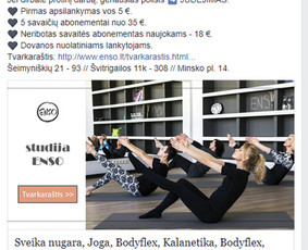 Pardavimų didinimas internetinės reklamos pagalba / Eglė Tertelė / Darbų pavyzdys ID 831981