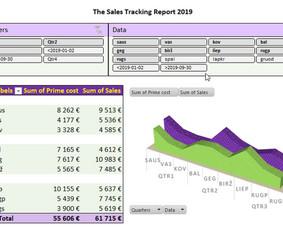 Duomenų analizė su Pivot ir Chart įrankiais, vizualinis pateikimas.