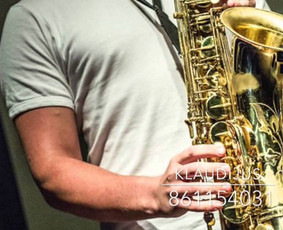 Muzikantas, dainininkas, grupė